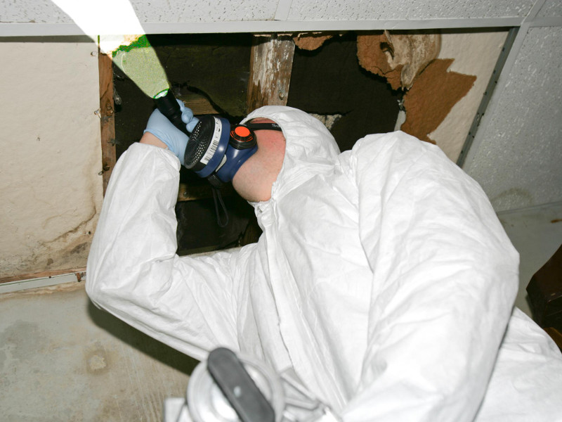 Asbestos Inspection And Sampling Ap Engineering